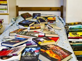 Bed covered with books