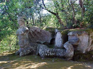 Rock carving depicting Echidna