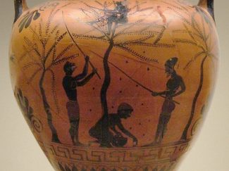 Vase painting workers gathering olives