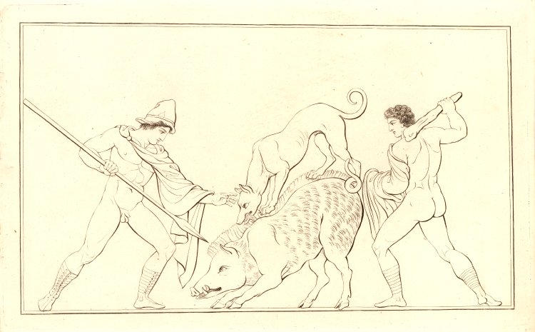 Odysseus woulded by th eboar