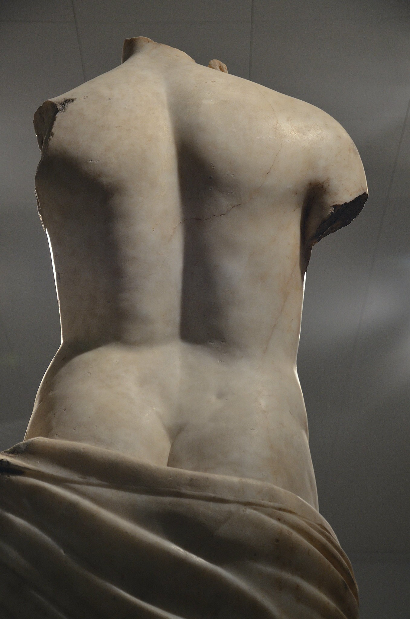 Statue of Venus, rear view